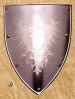 EAGLES SHIELD