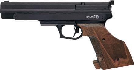 Gamo Compact full power airgun.