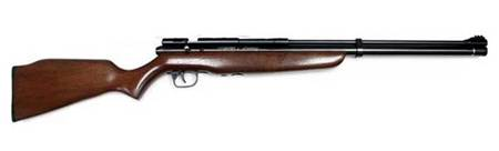CROSMAN BENJAMIN DISCOVERY AIRGUN