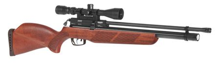 GAMO COYOTE AIRGUN
