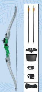 RECURVE BOW SET