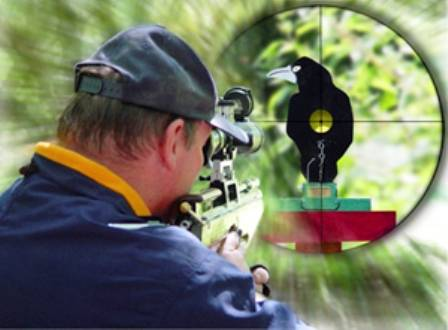 Field Target with PCP airgun