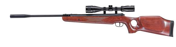 Ruger Air Hawk elite air rifle.