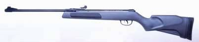Air guns: Spring carbine Gamo