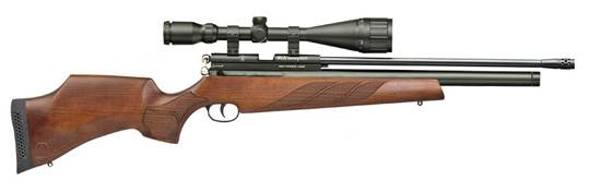 BSA AIRGUN PCP