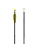 Carbon arrow Iniciacion 5.5 Recur.-Po.